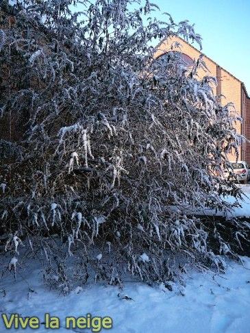 Louvain La Neuve sous la neige