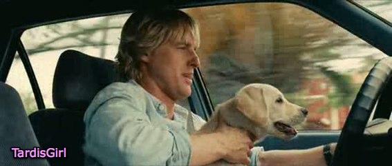 Marley & Moi - Un film qui a du chien