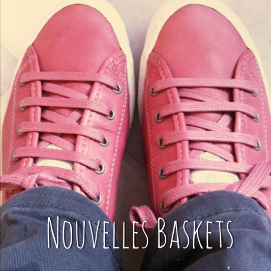 baskets palladium rose