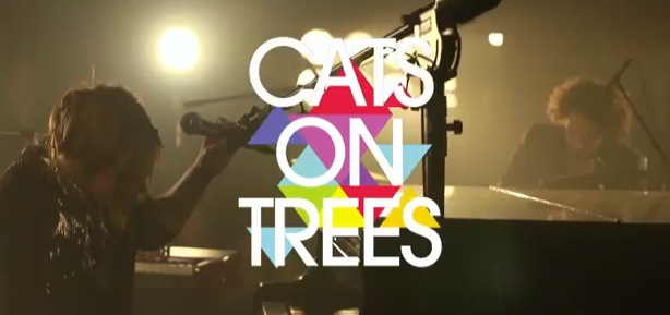 cats on trees selena gomez